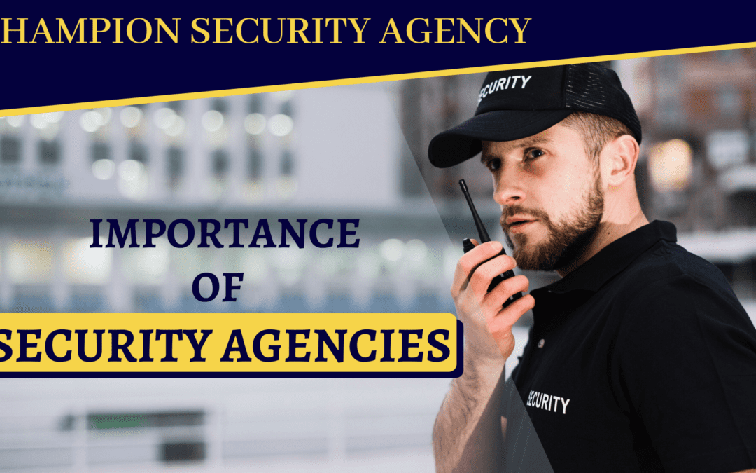 Importance of Security Agencies
