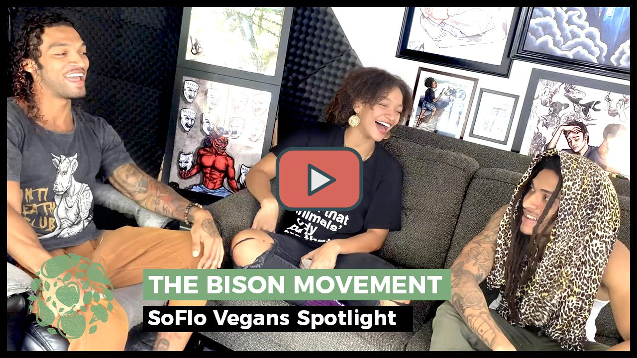 The Bison Movement