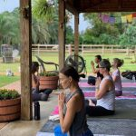 Yoga at the Animal Sanctuary