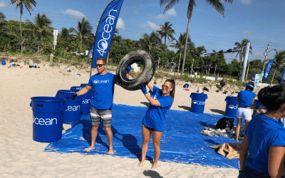 National Beach Day: 4Ocean and Other Local Efforts | Community Showcase